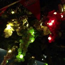 Amazing Grape Lights 4