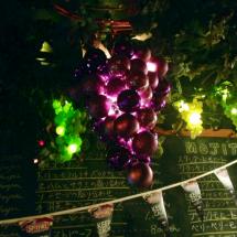 Amazing Grape Lights 5