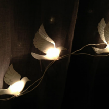 Lights of White Birds 2